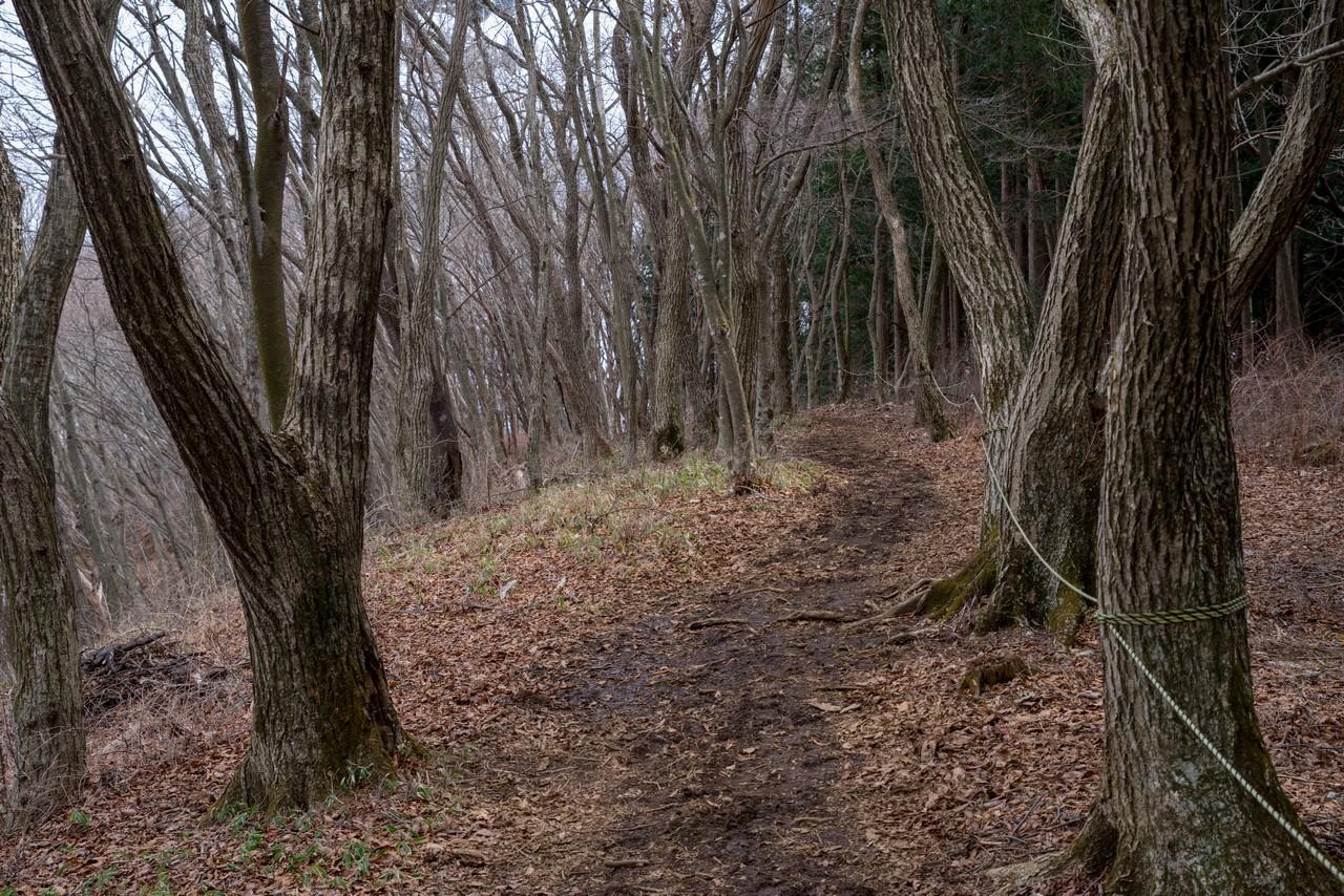 200215丸山_054