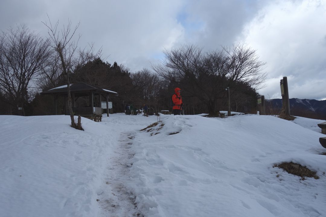 170114棒ノ折山_047
