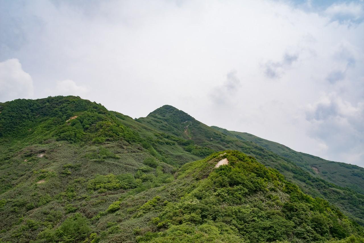 七ツ小屋山 鞍部からの登り返し