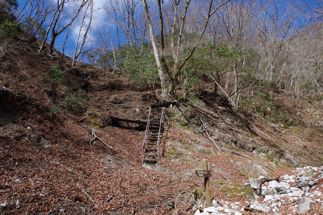 鍋割山 雨山峠コースの源頭部付近