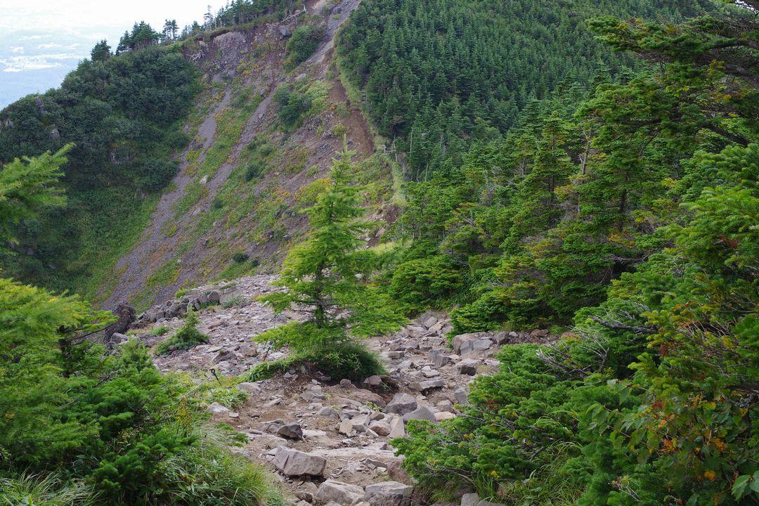 浅間外輪の登山道