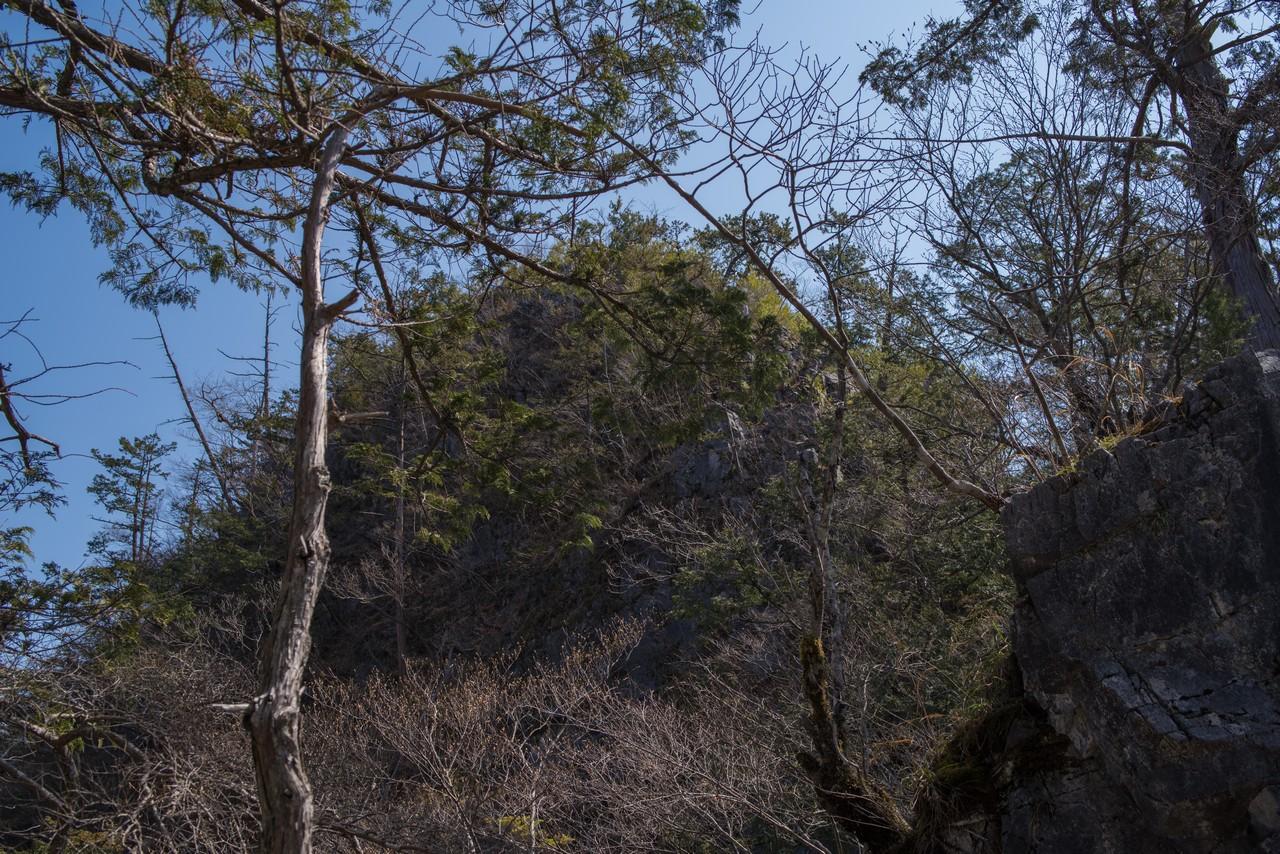 鞍部から見た稲村岩