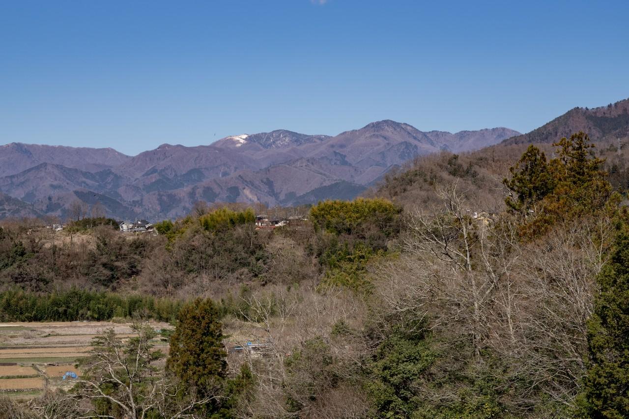 190324倉岳山_019