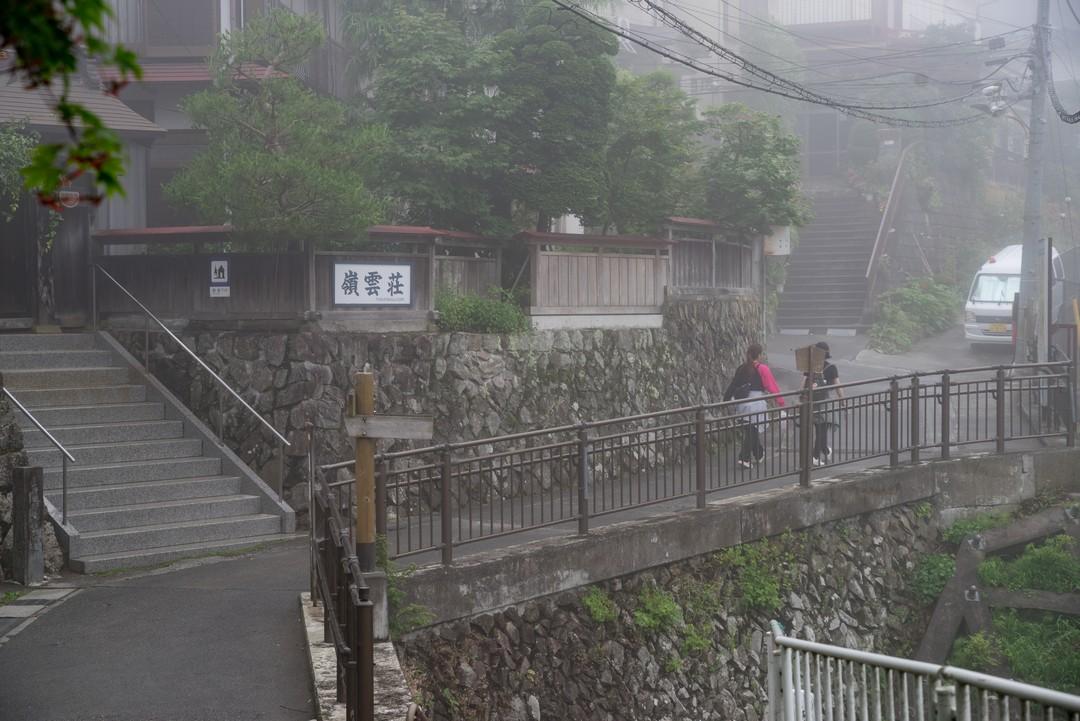 190630南沢あじさい山_093