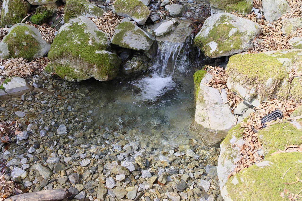 稲村岩直下の渡渉地点