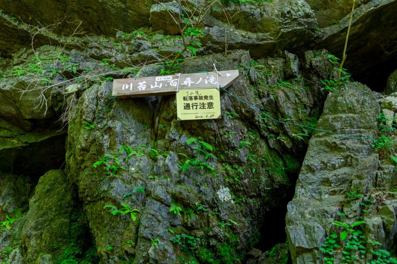 川苔山 川乗橋コースの高巻き箇所