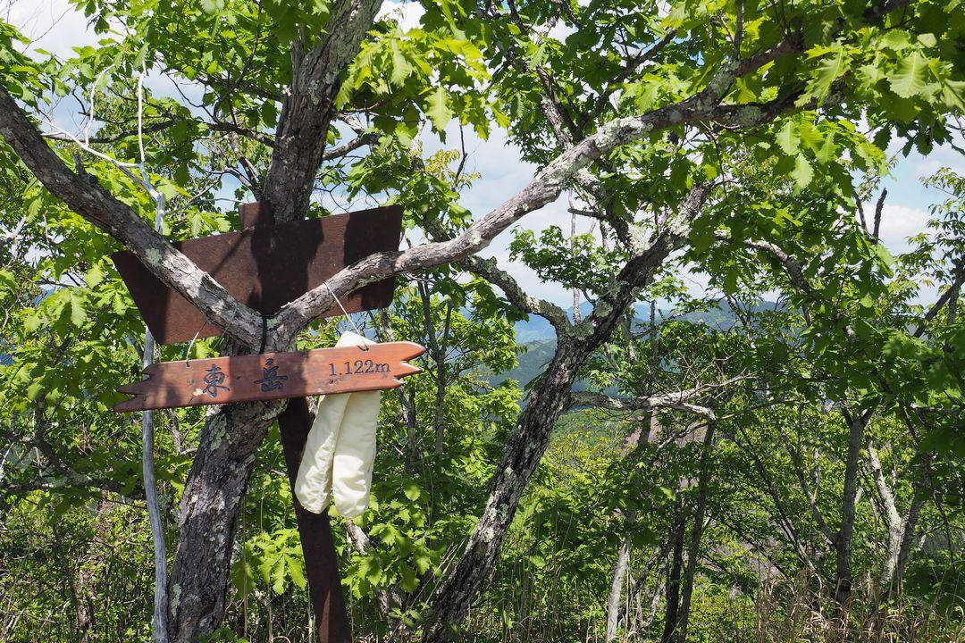二子山 東岳の山頂標識