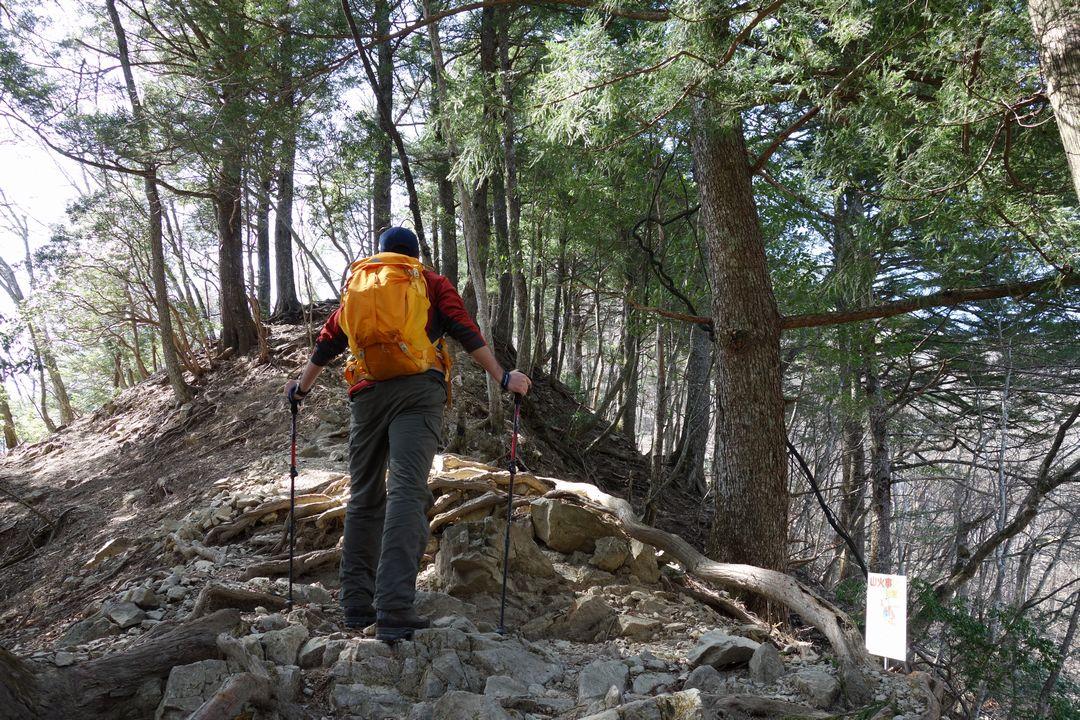 稲村岩尾根の入り口に立つ登山者の後姿