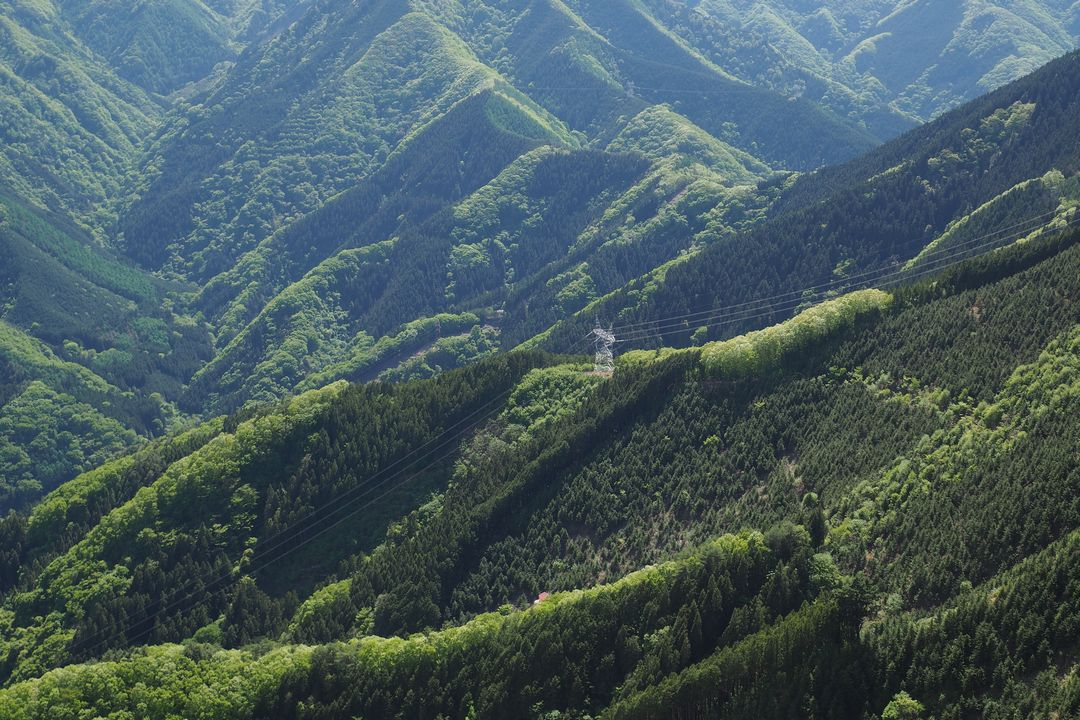 1二子山 岩尾根から見た送電鉄塔
