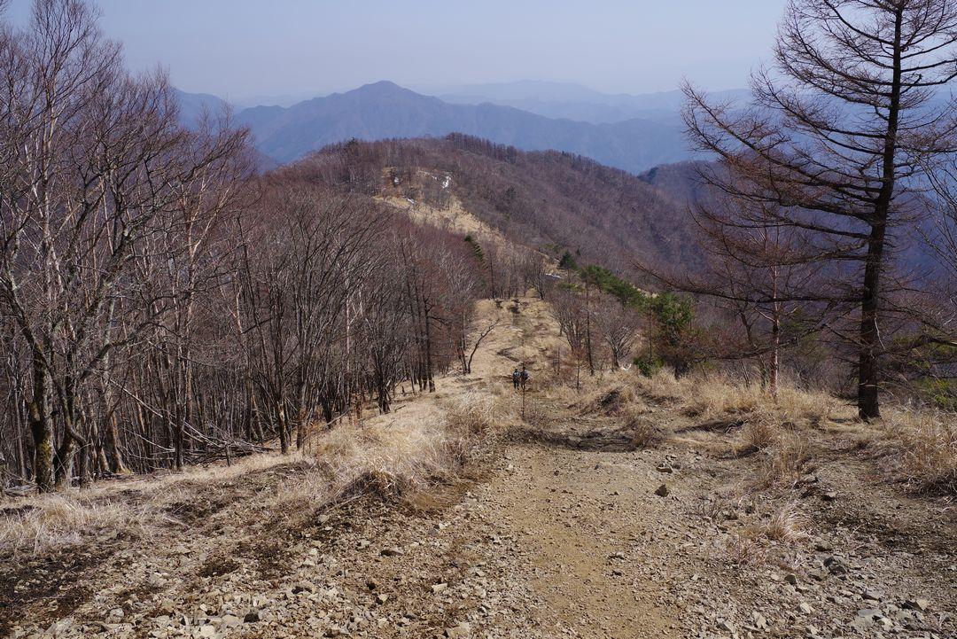 鷹ノ巣山から見た石尾根