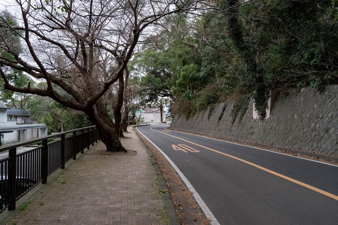 190223真鶴半島_044