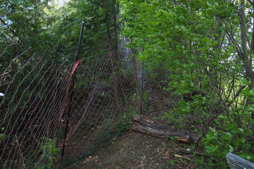 二子山 鹿除け柵のゲート