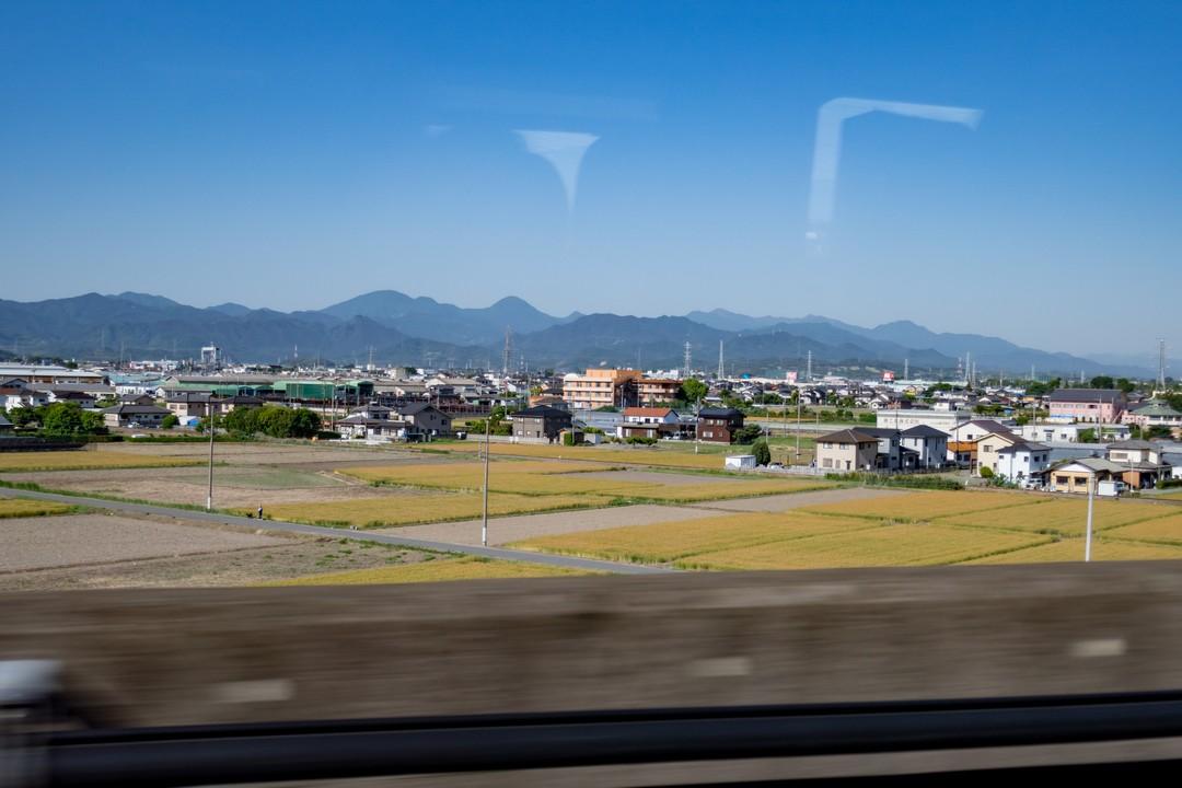 190525仙ノ倉山_005
