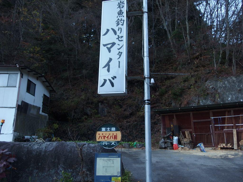 151128雁ヶ腹擦山_043