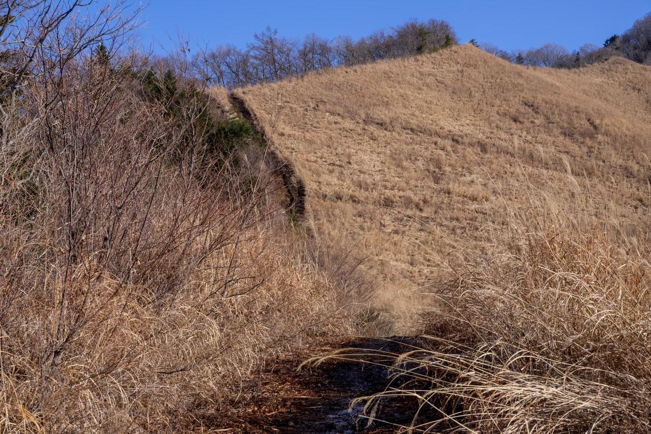 200103杓子山_025