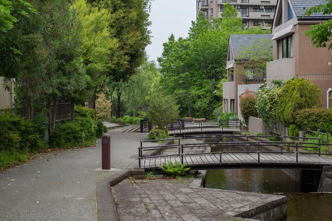 せせらぎ緑道の水辺風景