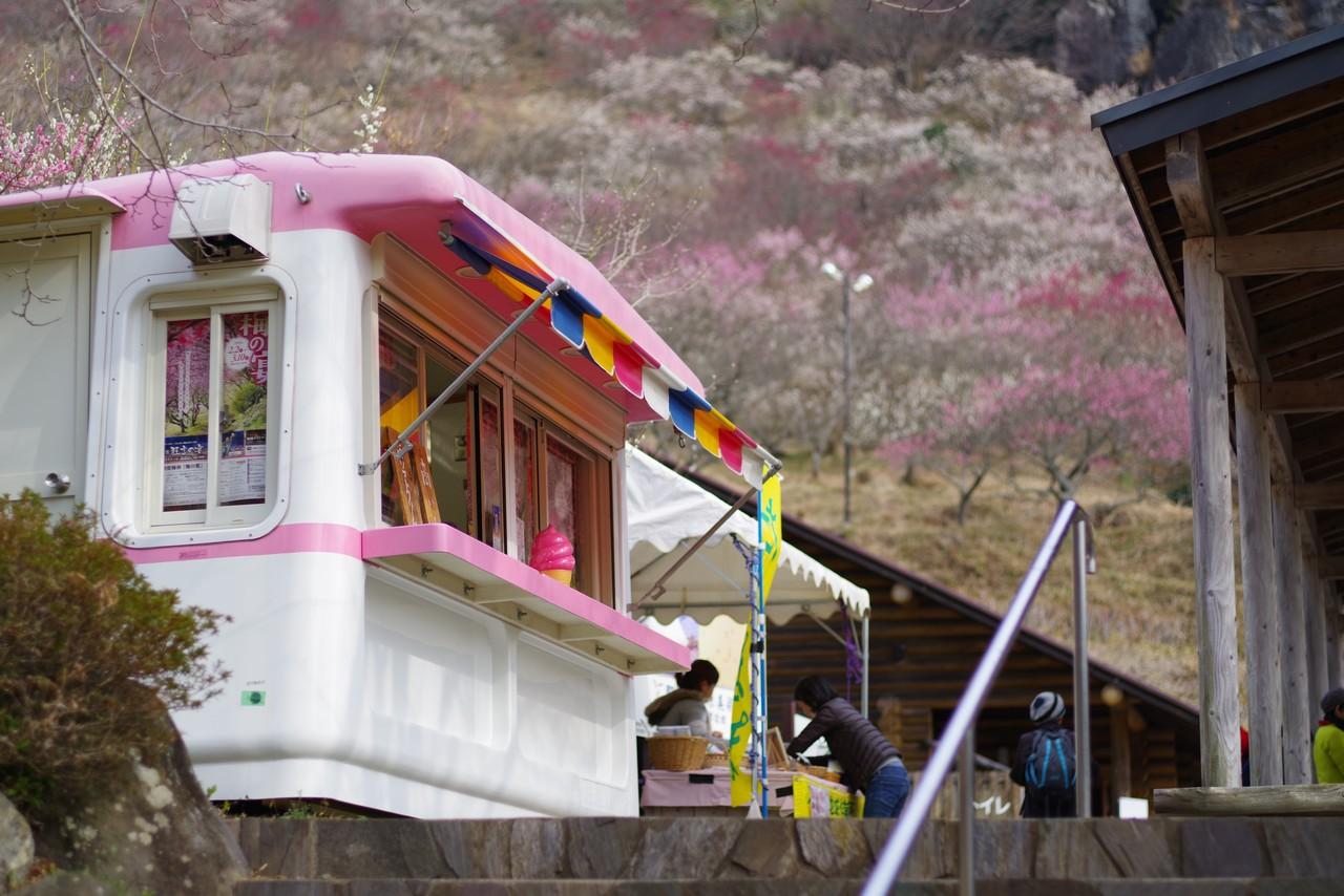 幕山公園のソフトクリーム販売所