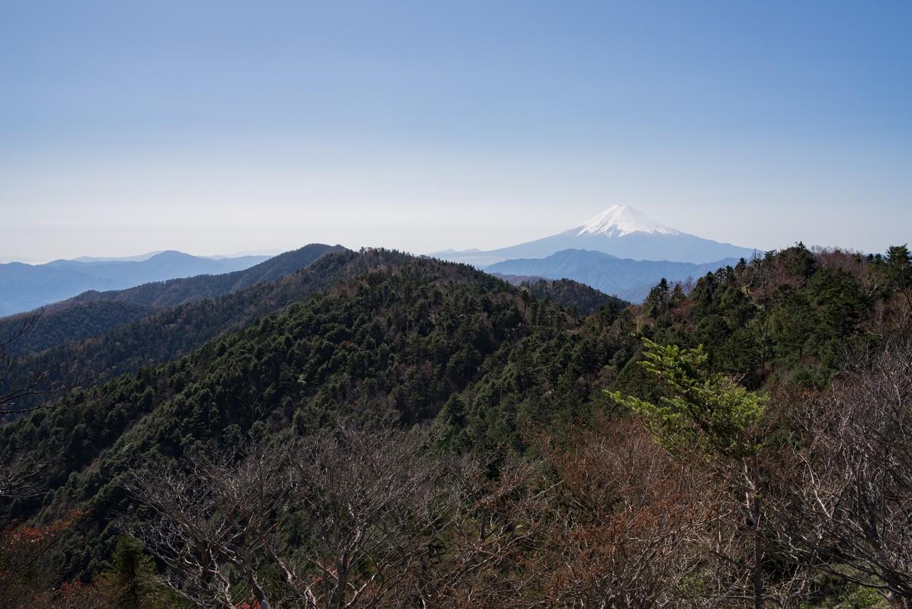 小金沢山からの富士展望