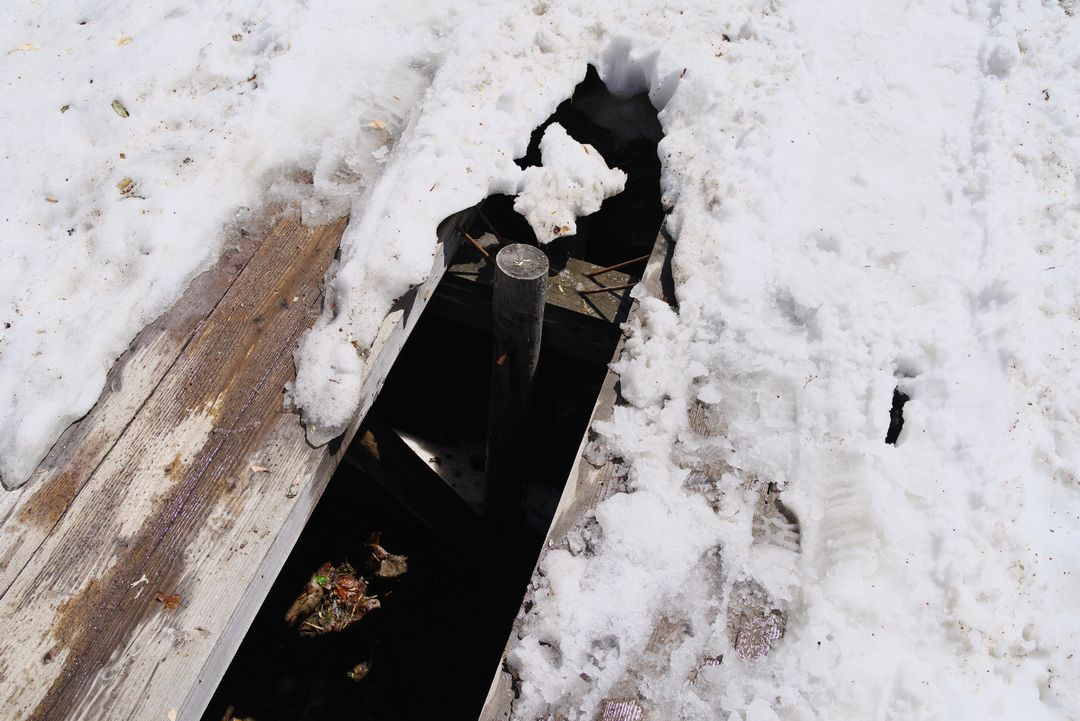 雪から頭を出した木道