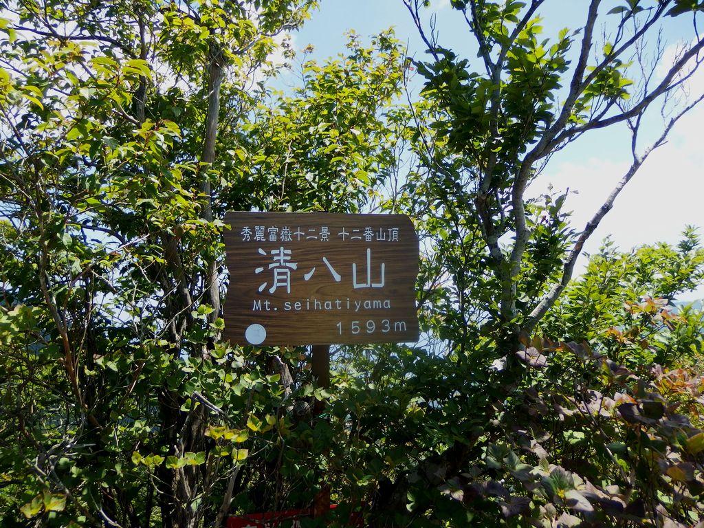 150711本社ヶ丸_038