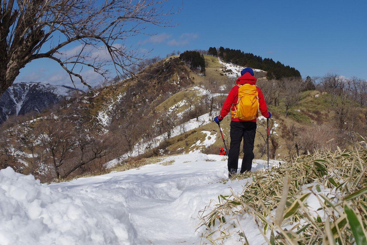 積雪時の丹沢主脈