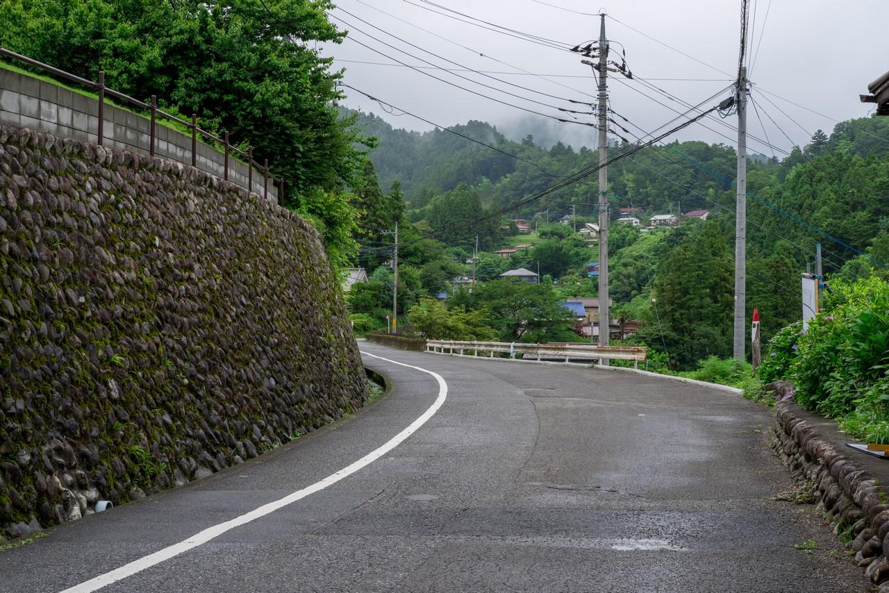 190630南沢あじさい山_017