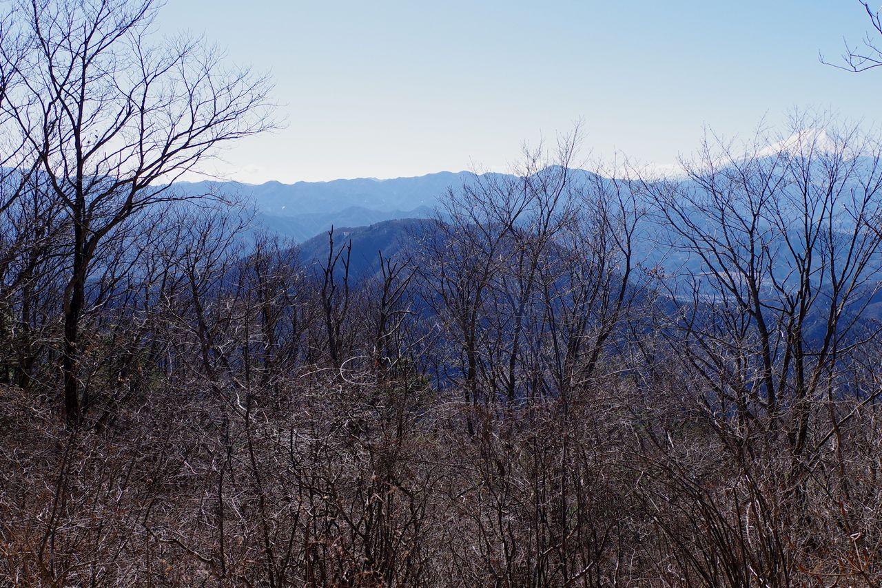 権現山から見た扇山