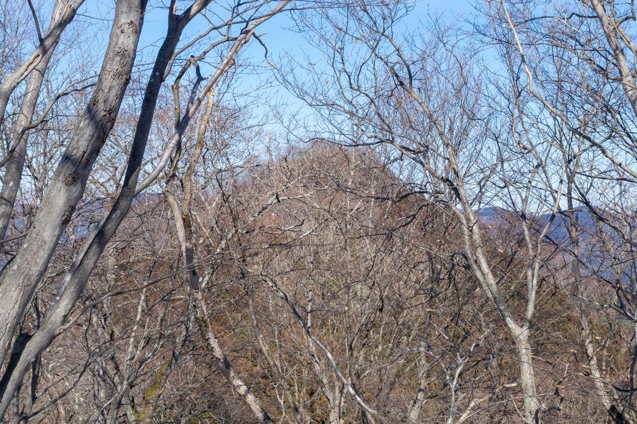 古御岳から見た伊豆ヶ岳