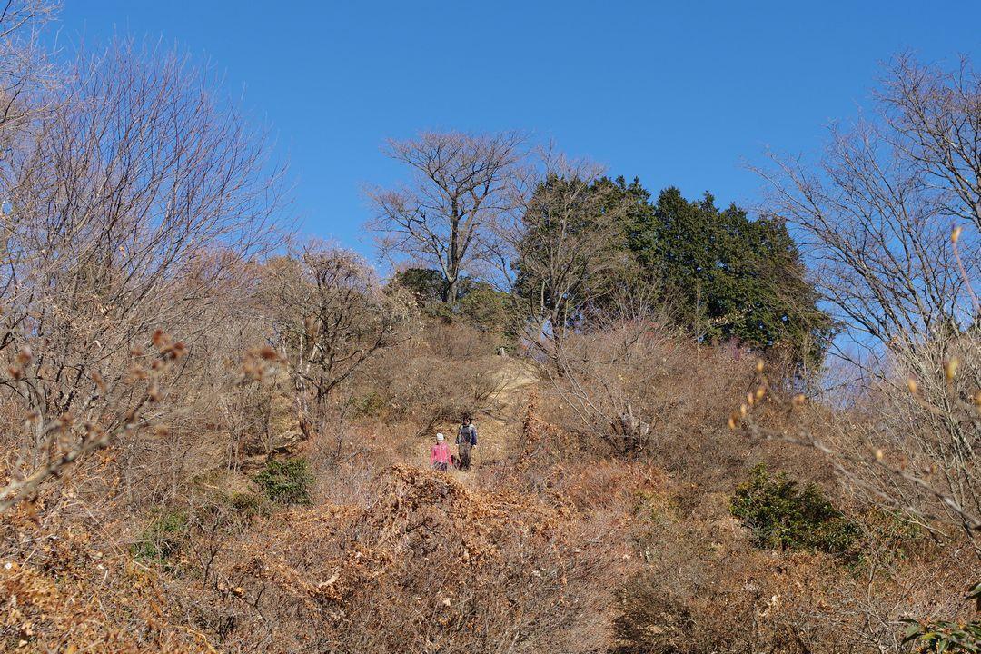 関八州見晴台の山頂直下