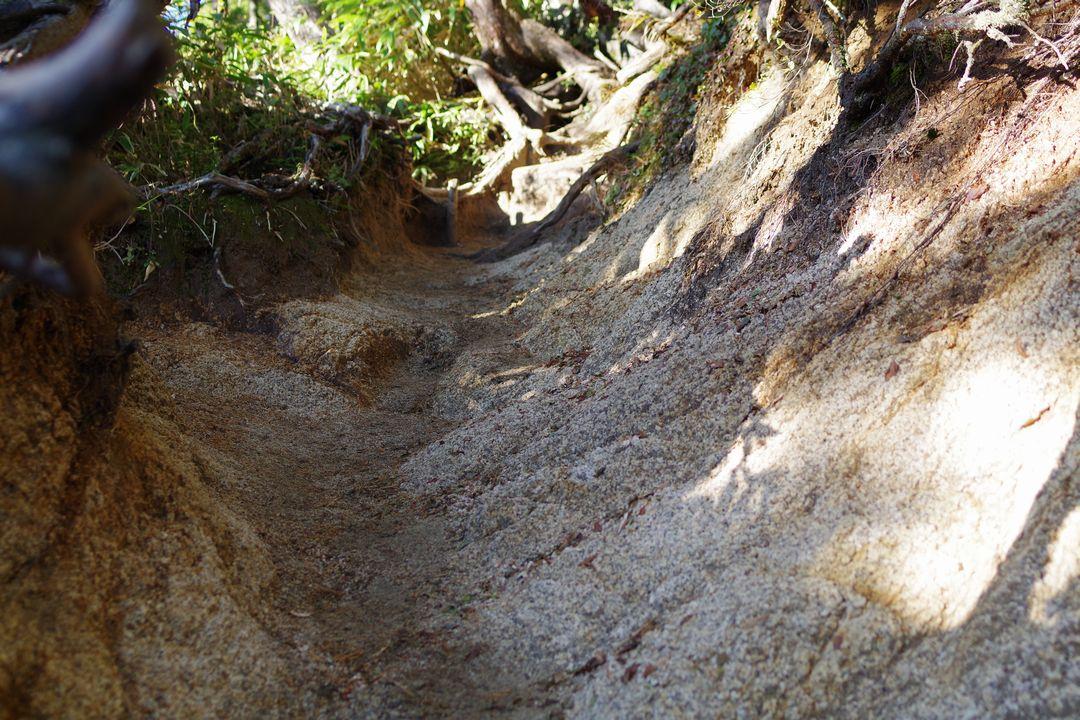 合戦尾根の露出した花崗岩