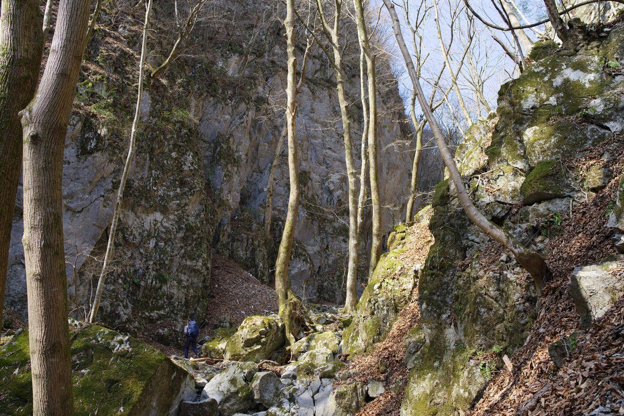 稲村岩直下の登山道