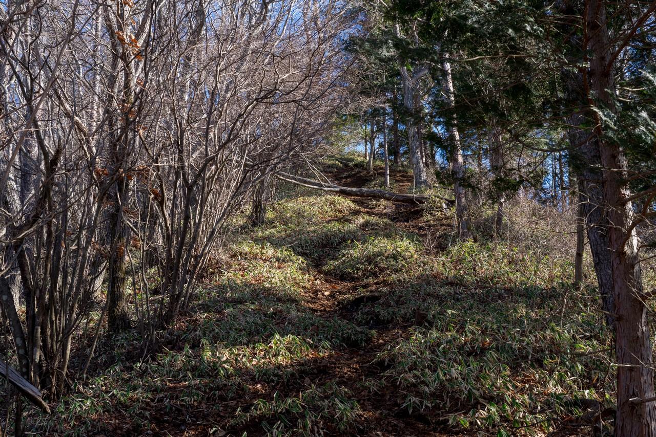 200103杓子山_041