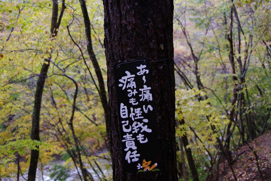171029西沢渓谷_024