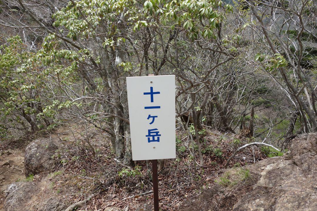 160503十二ヶ岳_035