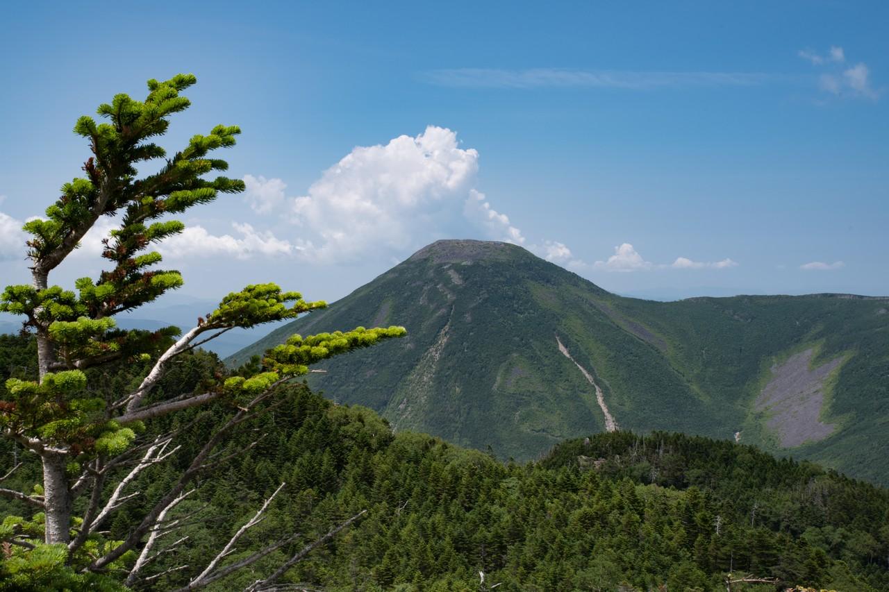 北横岳から見た蓼科山