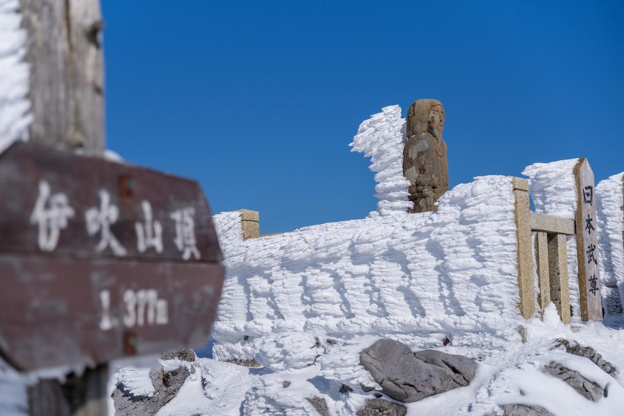 伊吹山山頂の日本武尊像にはえたエビのしっぽ