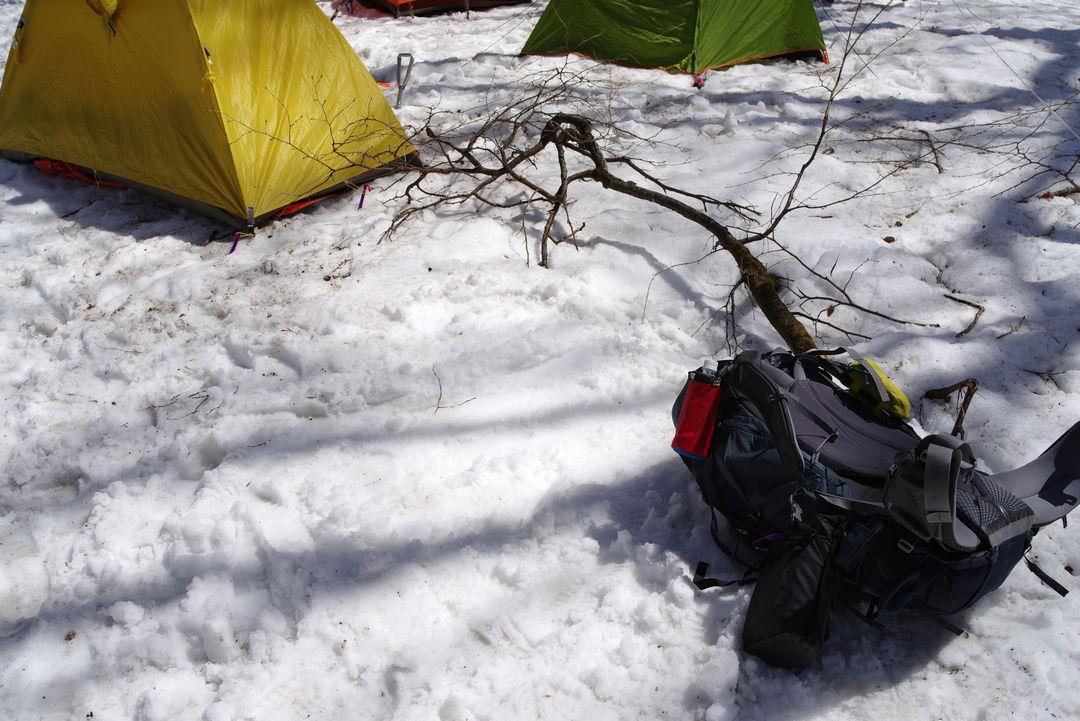 山の鼻 キャンプ指定地