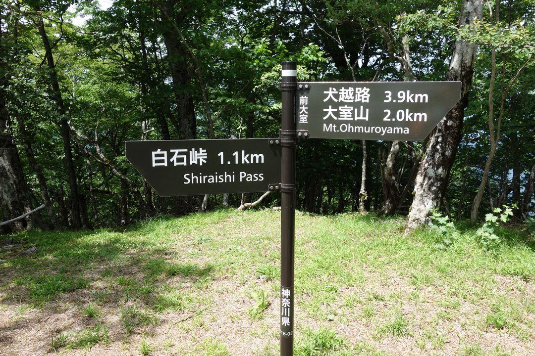 160611大室山_038
