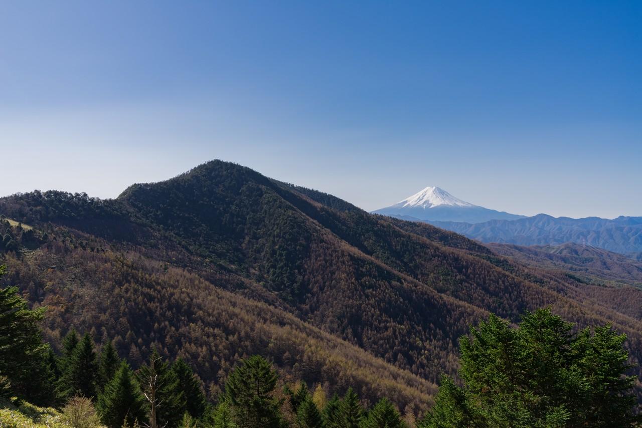 石丸峠付近から見た小金沢山