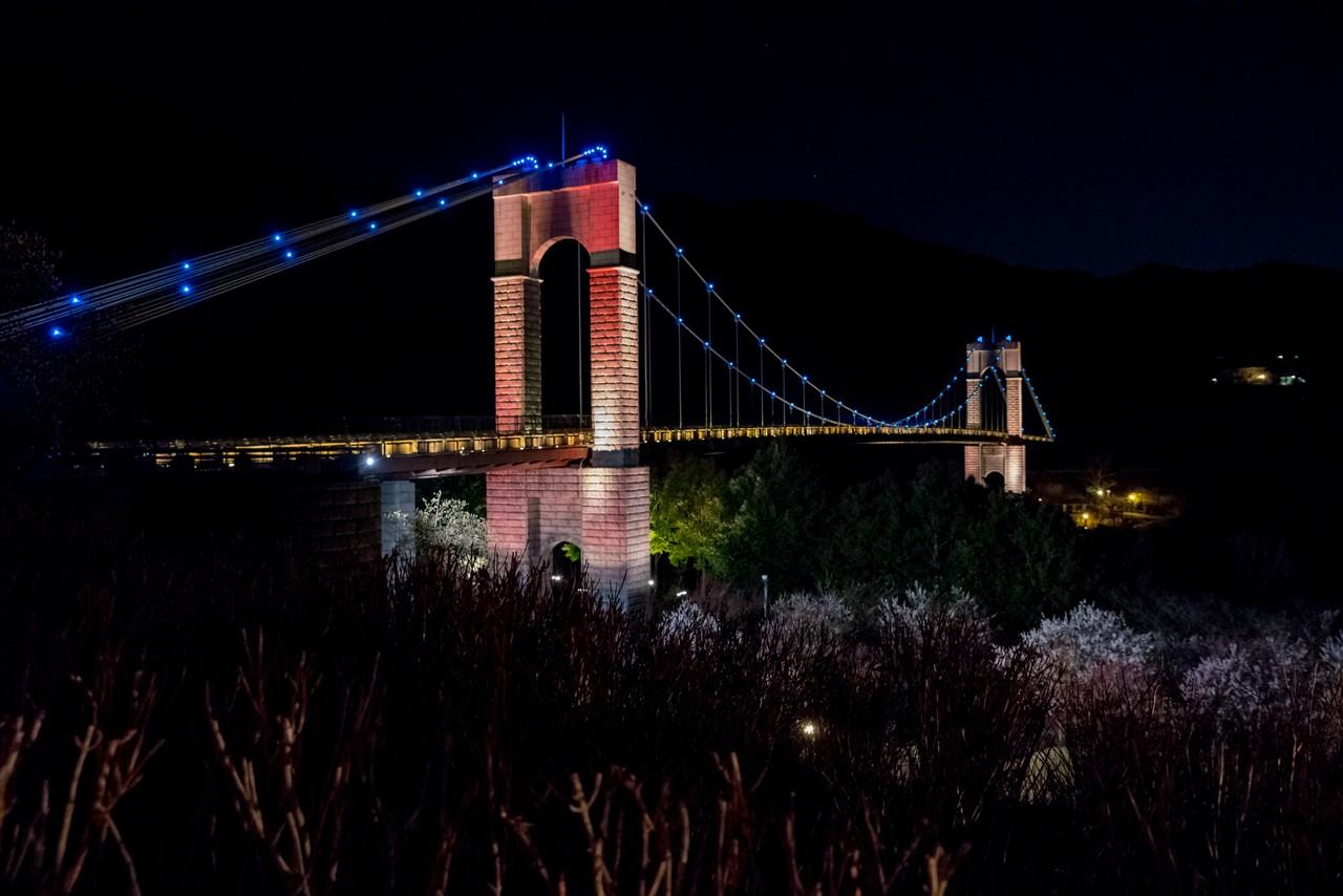 戸川公園 風の吊り橋のライトアップ
