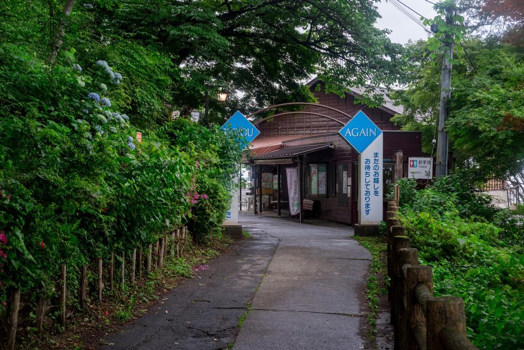 190630南沢あじさい山_094