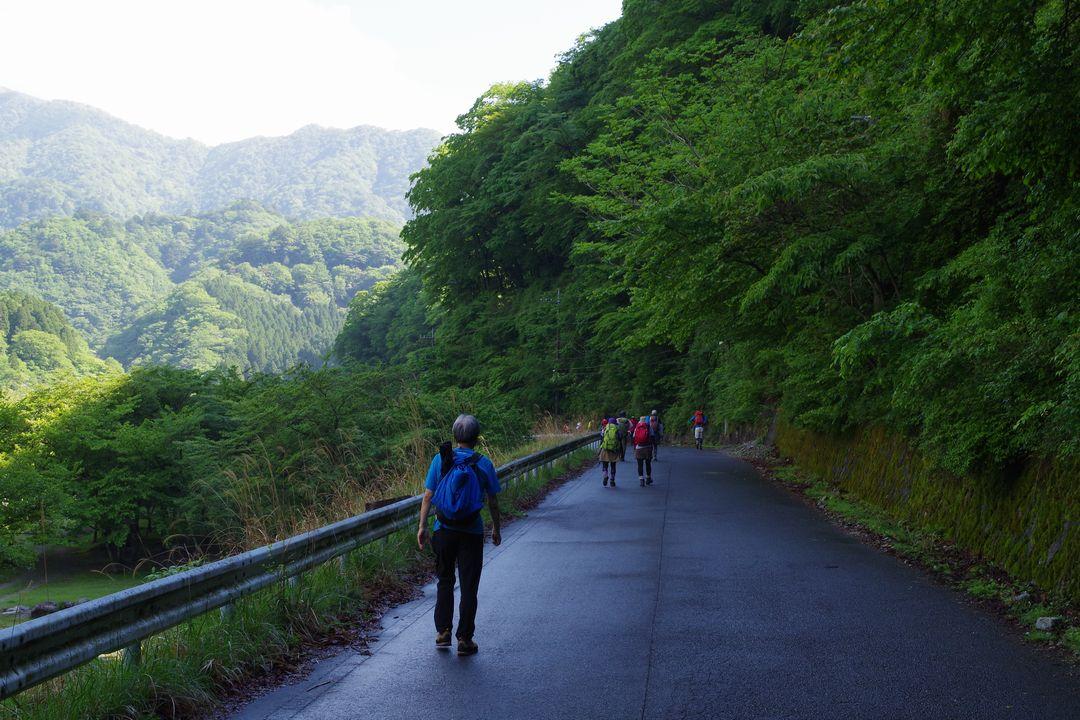 西丹沢の林道を歩く登山者