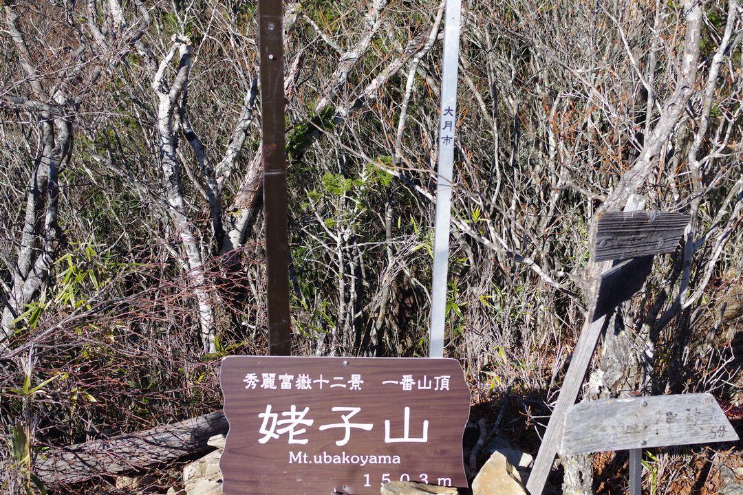 姥子山山頂