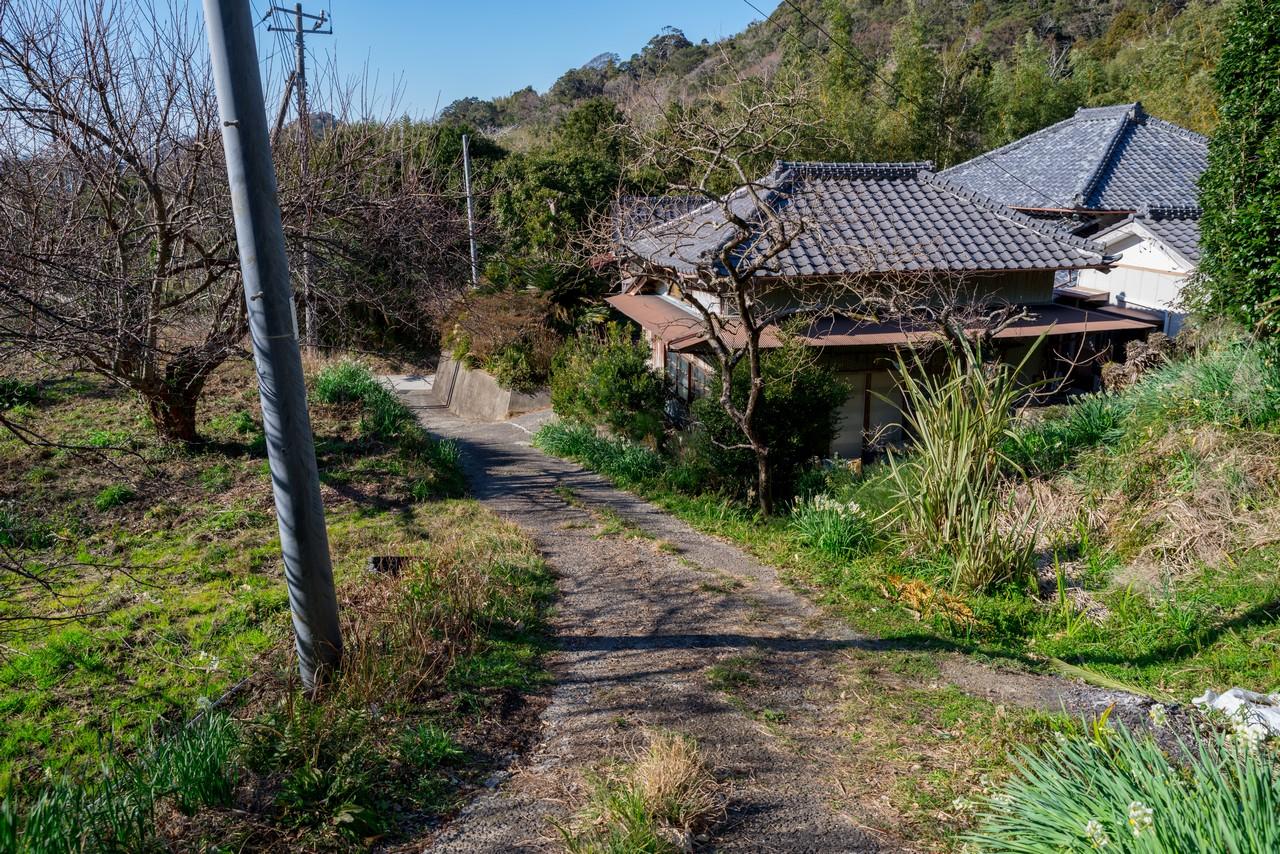 200209伊予ヶ岳_114
