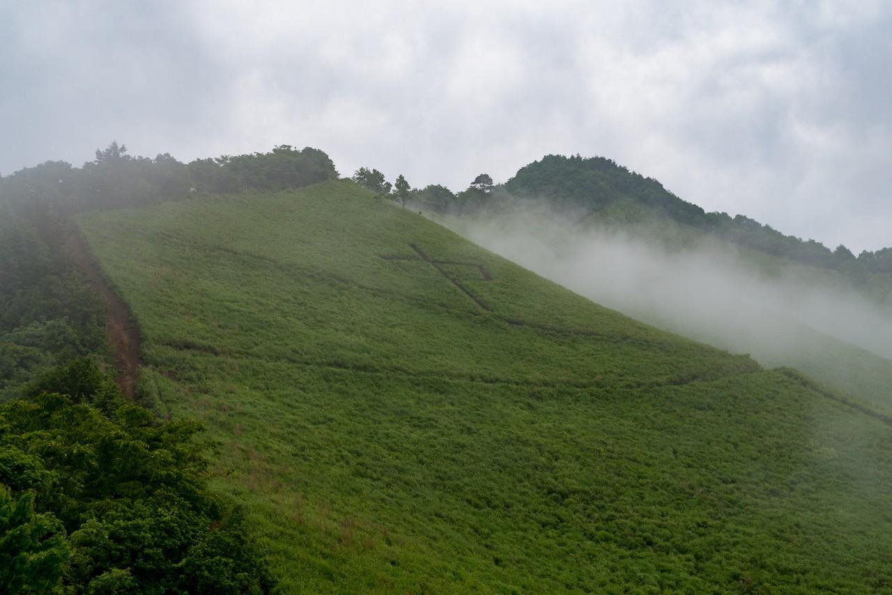 杓子山の茅場