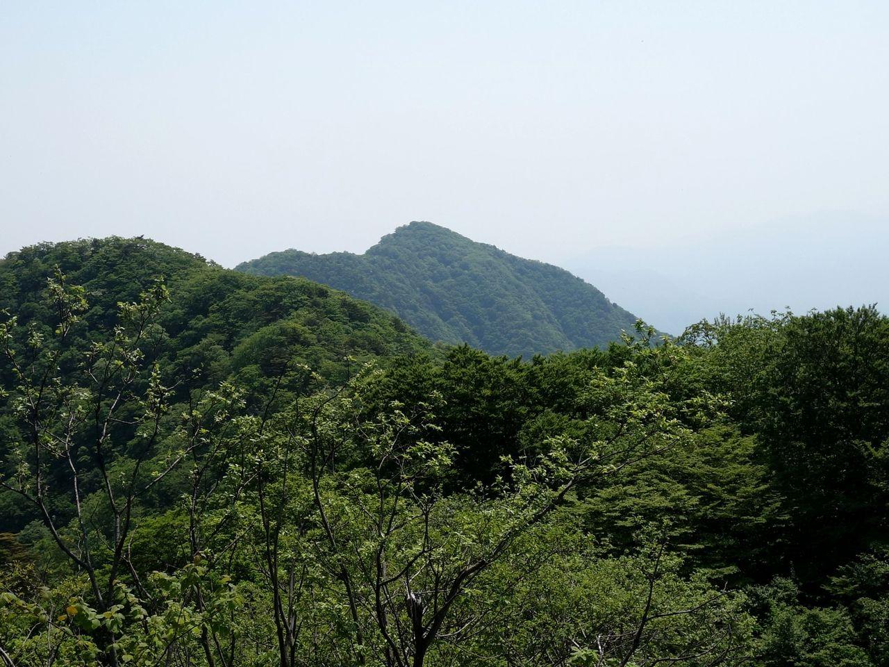 150711本社ヶ丸_001