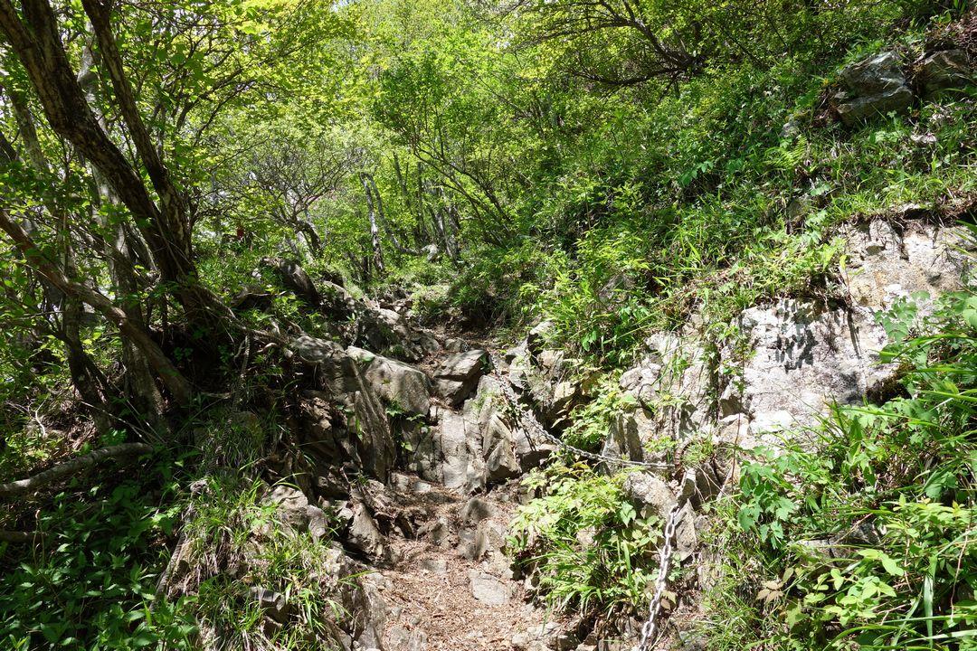 丹沢主稜縦走路の鎖場