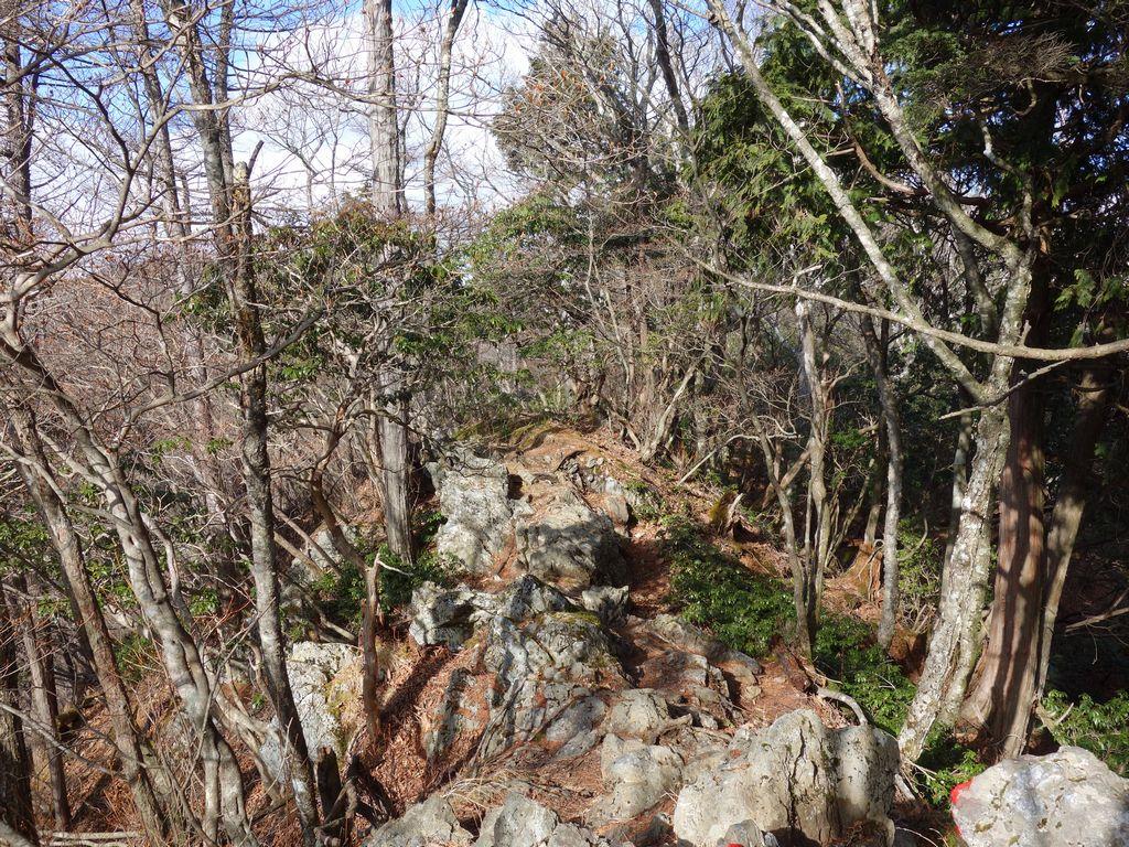天目背稜の岩場