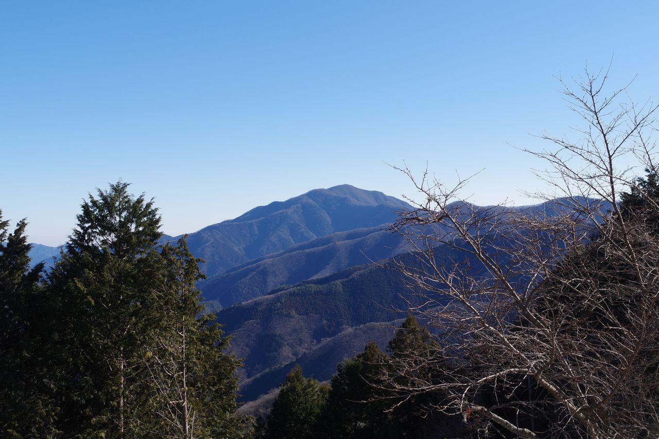 大寺山山頂から見た三頭山