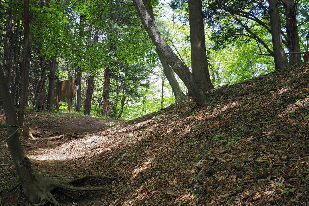 二子山 股峠までの登山道の様子